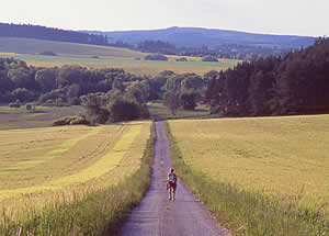 Czech Greenways cycling tour Valtice - Cesky Krumlov